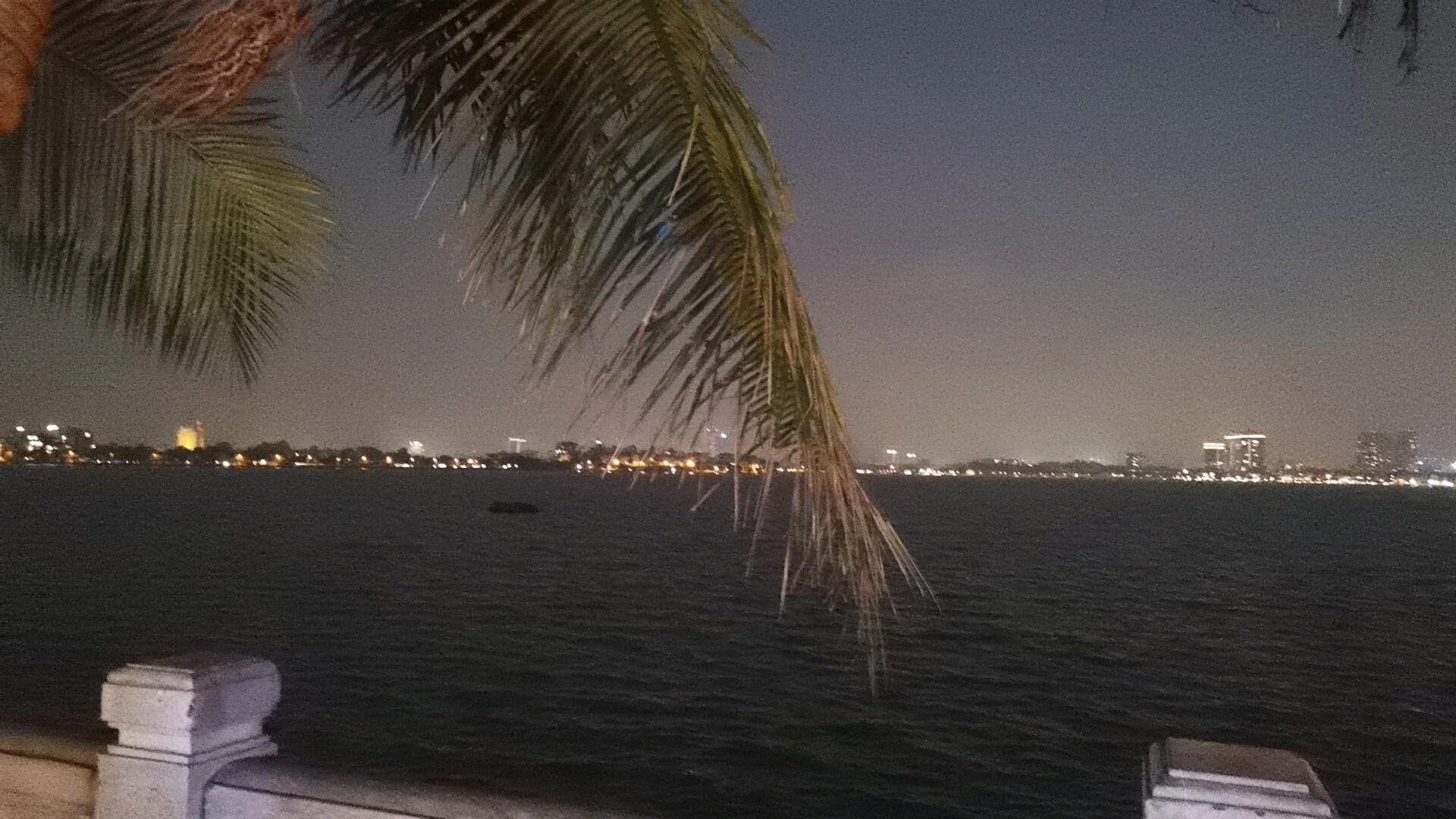 タイ湖の水辺